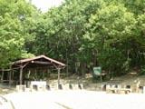 炊飯場・テントサイト